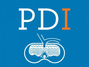 PDI 2020 – a year in review
